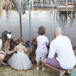 visiting the chicken coop in our family photo session   the love designed life