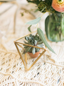 mini succulent details. | styled by paige of the love designed life