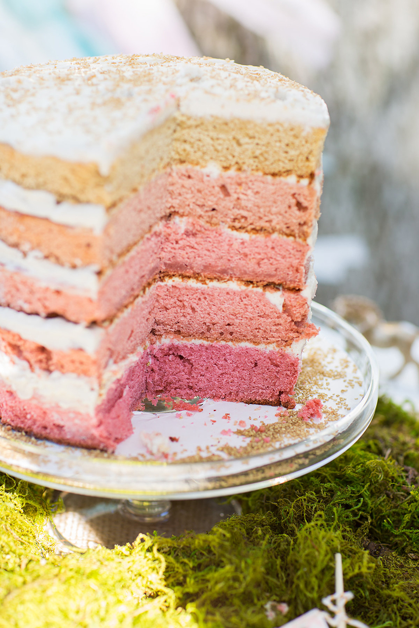 vegan gluten-free ombre naked cake for a magival first birthday party