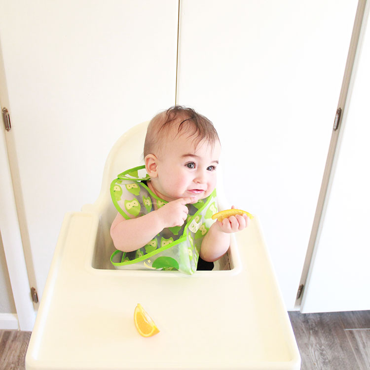 baby food tester