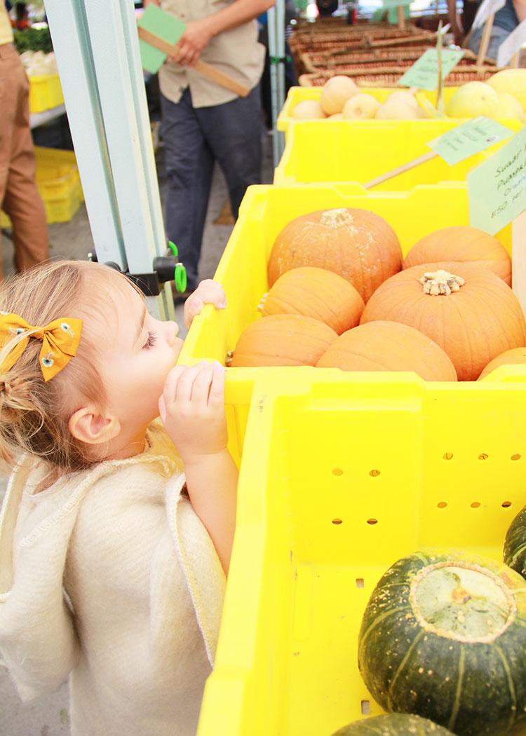 peeking at the pumpkins | thelovedesignedlife.com