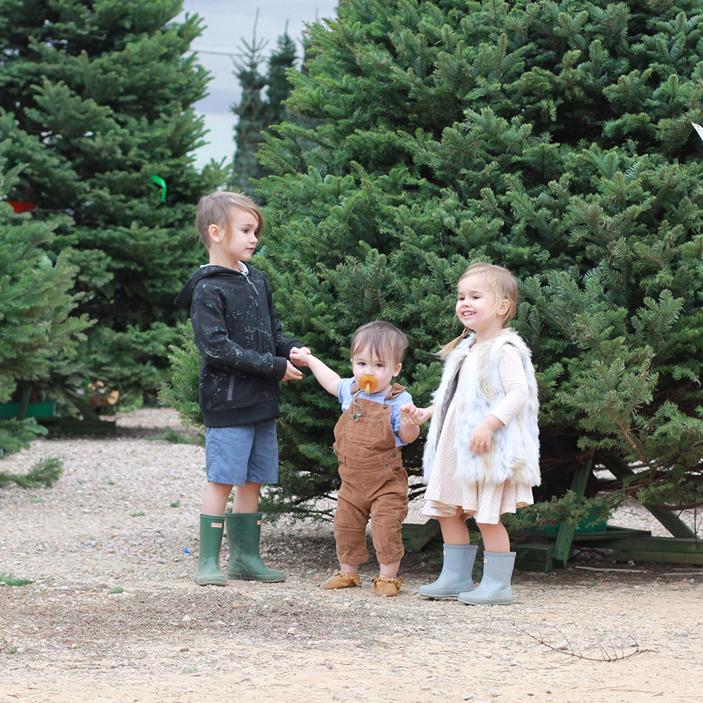 our annual christmas tree hunt | thelovedesignedlife.com
