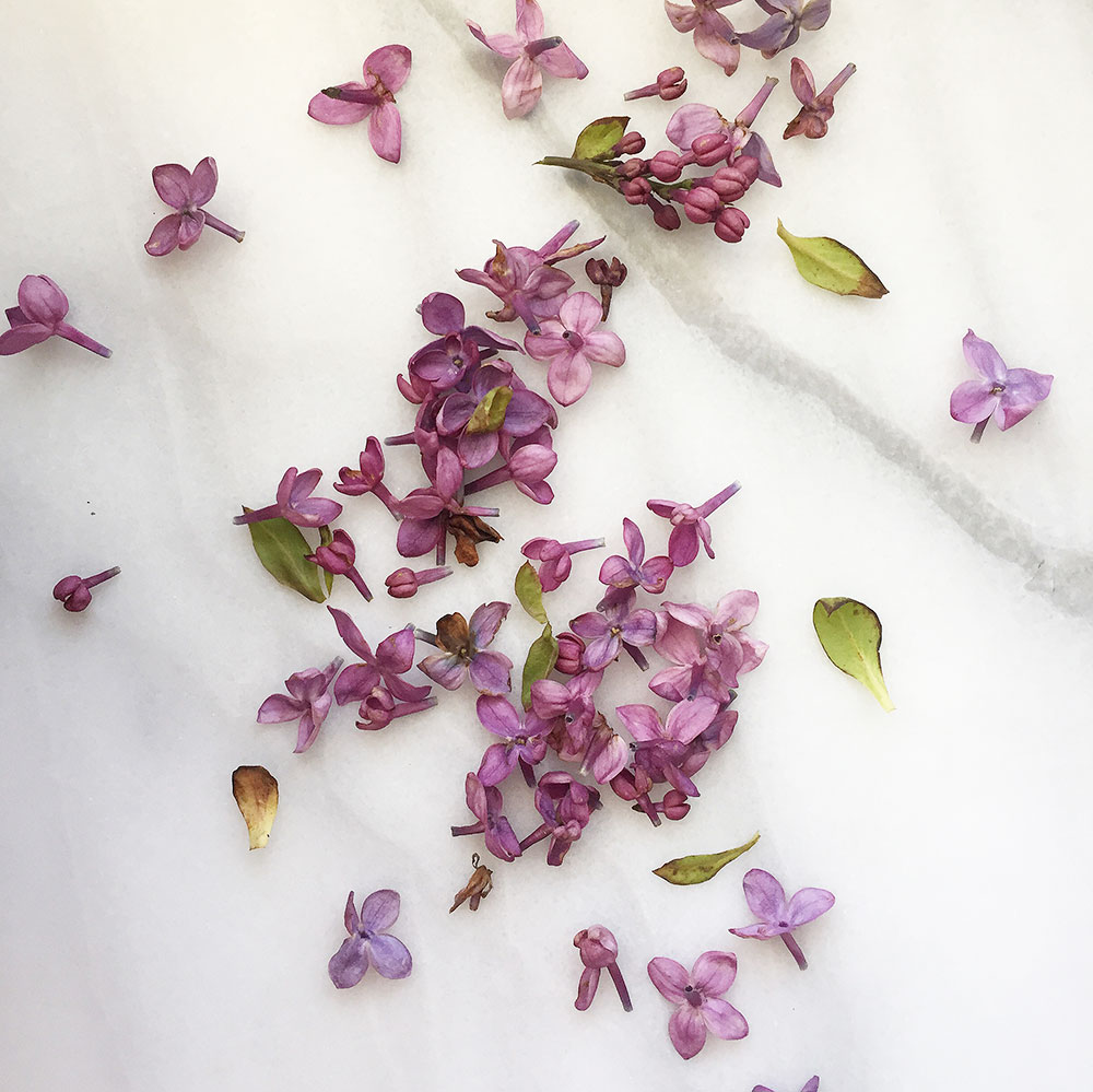 lilacs on marble | thelovedesignedlife.com
