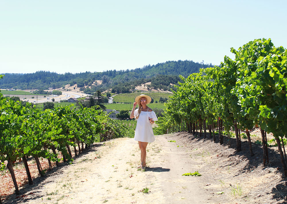 wine tasting in sonoma county wine country | thelovedesignedlife.com