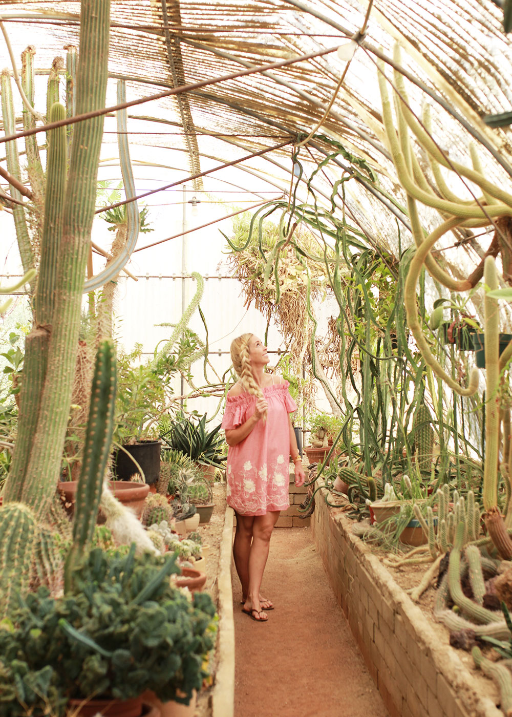 exploring the cactus gardens of palm springs, california on our girls trip | thelovedesignedlife.com
