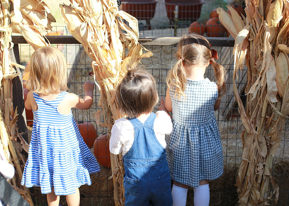 our october pumpkin patch farm visit | thelovedesignedlife.com