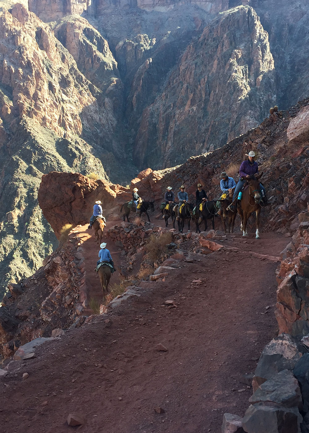 mules transporting some tourists on the grand canyon's north rim | thelovedesigneldife.com #thegrandcanyon #rimtorim