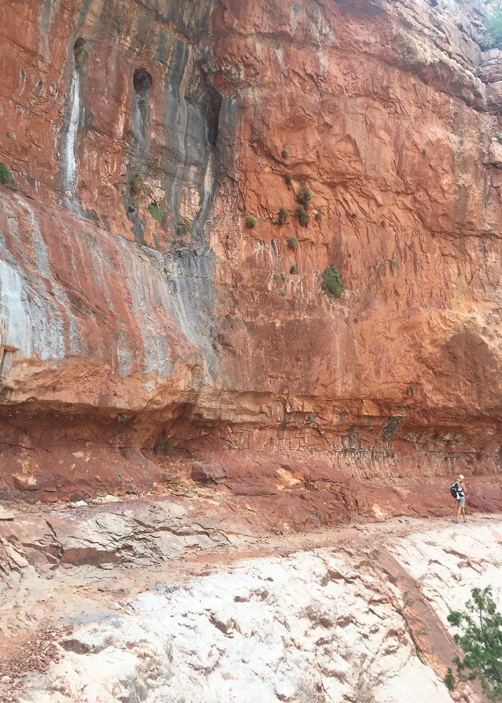 starting our ascent back up the north rim of the grand canyon   thelovedesignedlife.com #grandcanyon #northrim #rimtorim