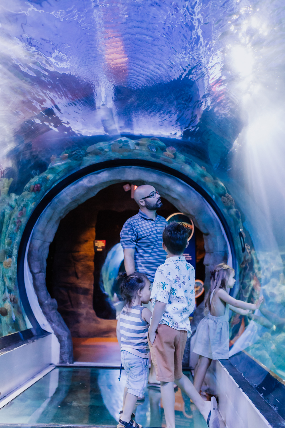the 360 degree tunnel at SEA LIFE Aquarium Arizona | thelovedesignedlife.com #sealife #aquariumviews