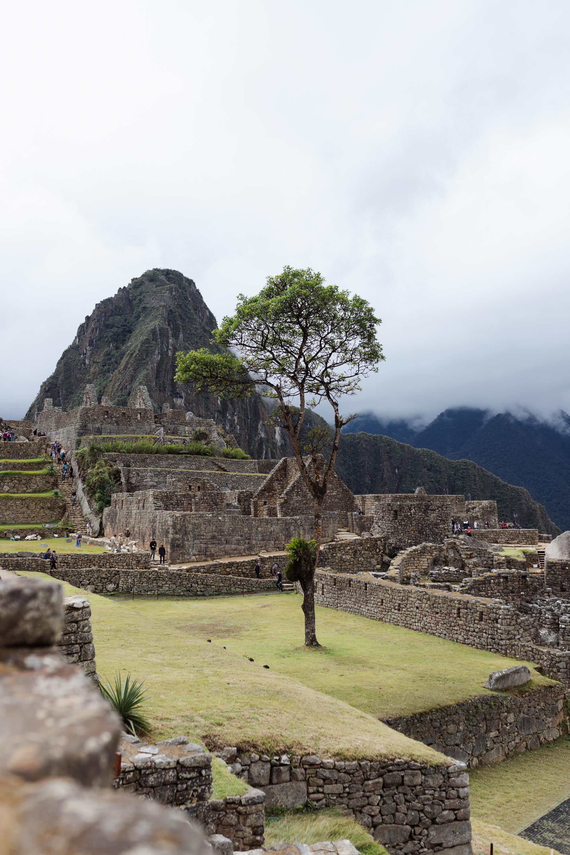 Machu Picchu, Peru #travel #wanderlust #southamerica