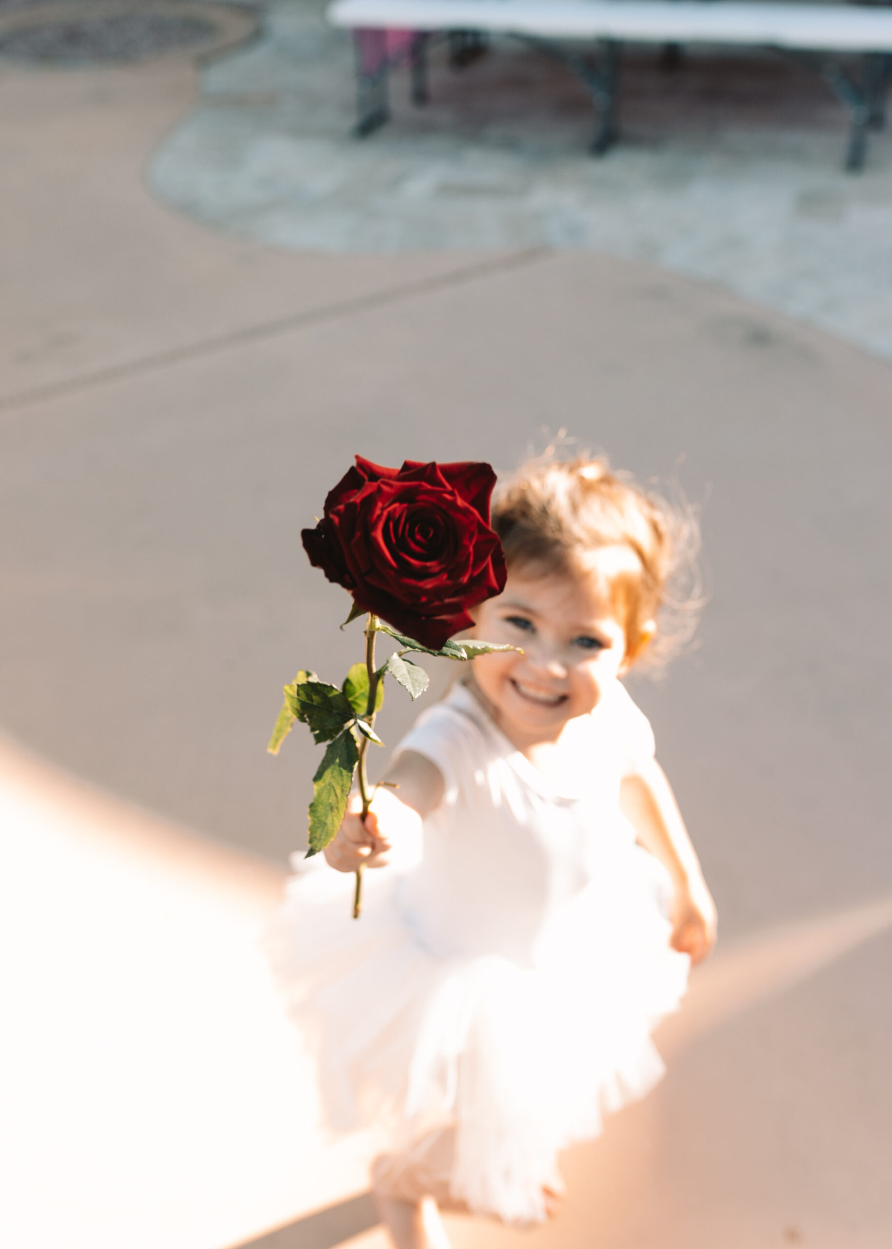 will you accept this rose? #valentinesdayplaydate #roses #galentines