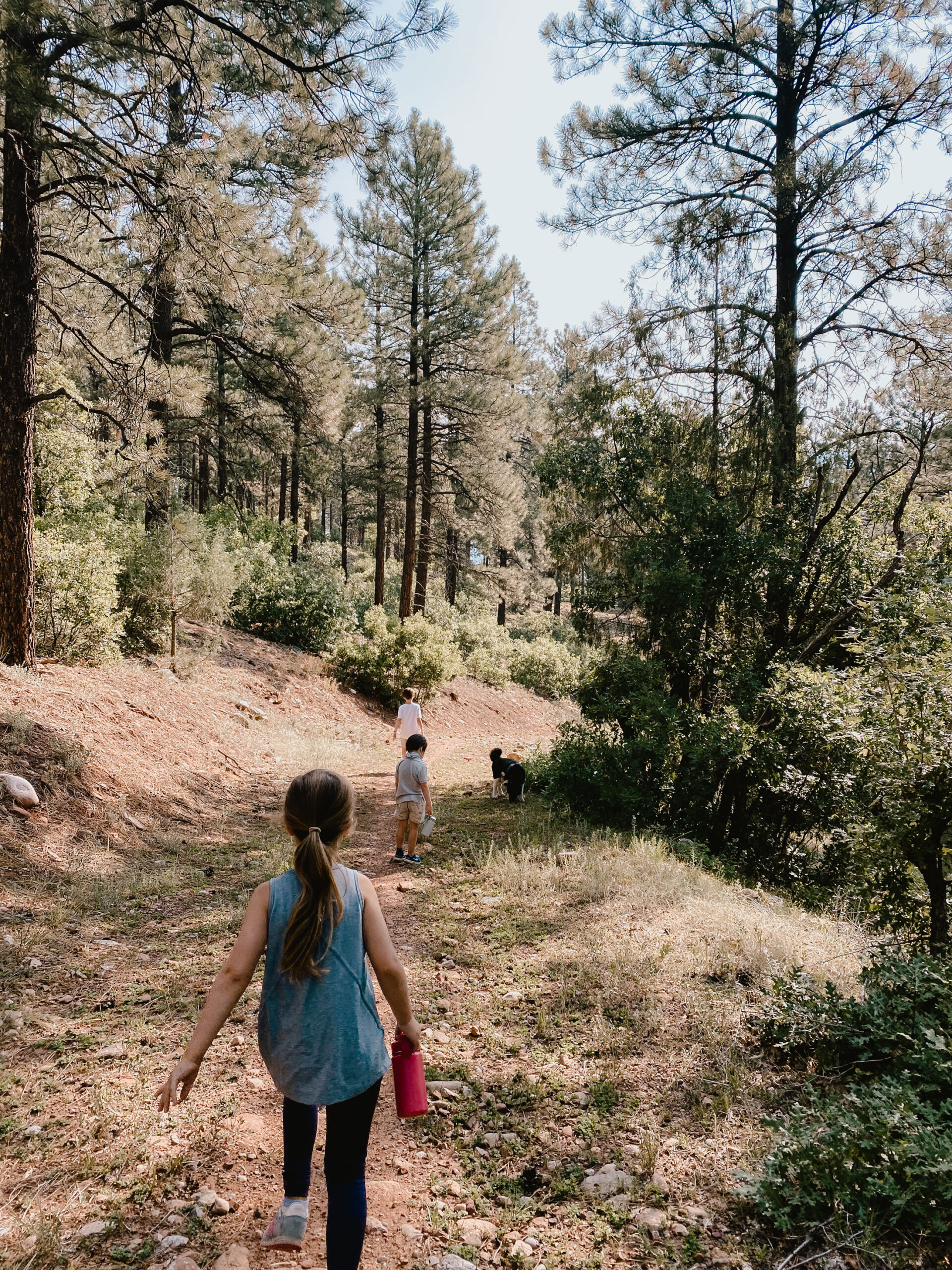 hiking in Durango, Colorado. #coloradomountains #hiking #outdoorswithkids #hikingwithkids
