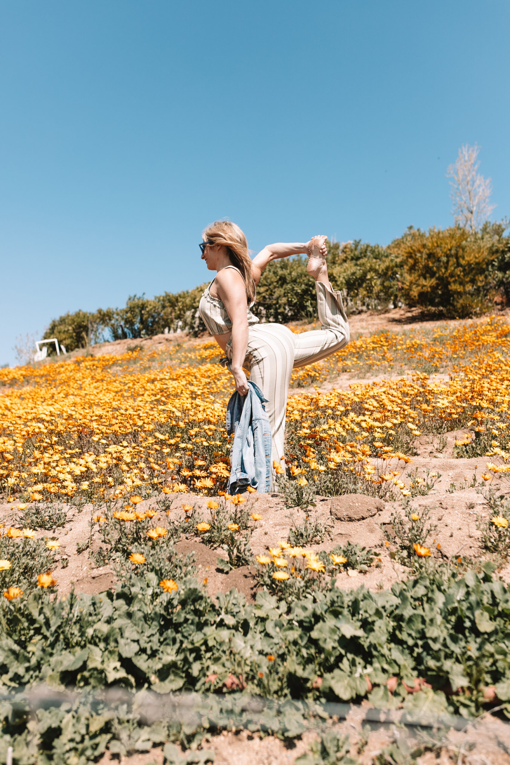 yoga in a field of flowers