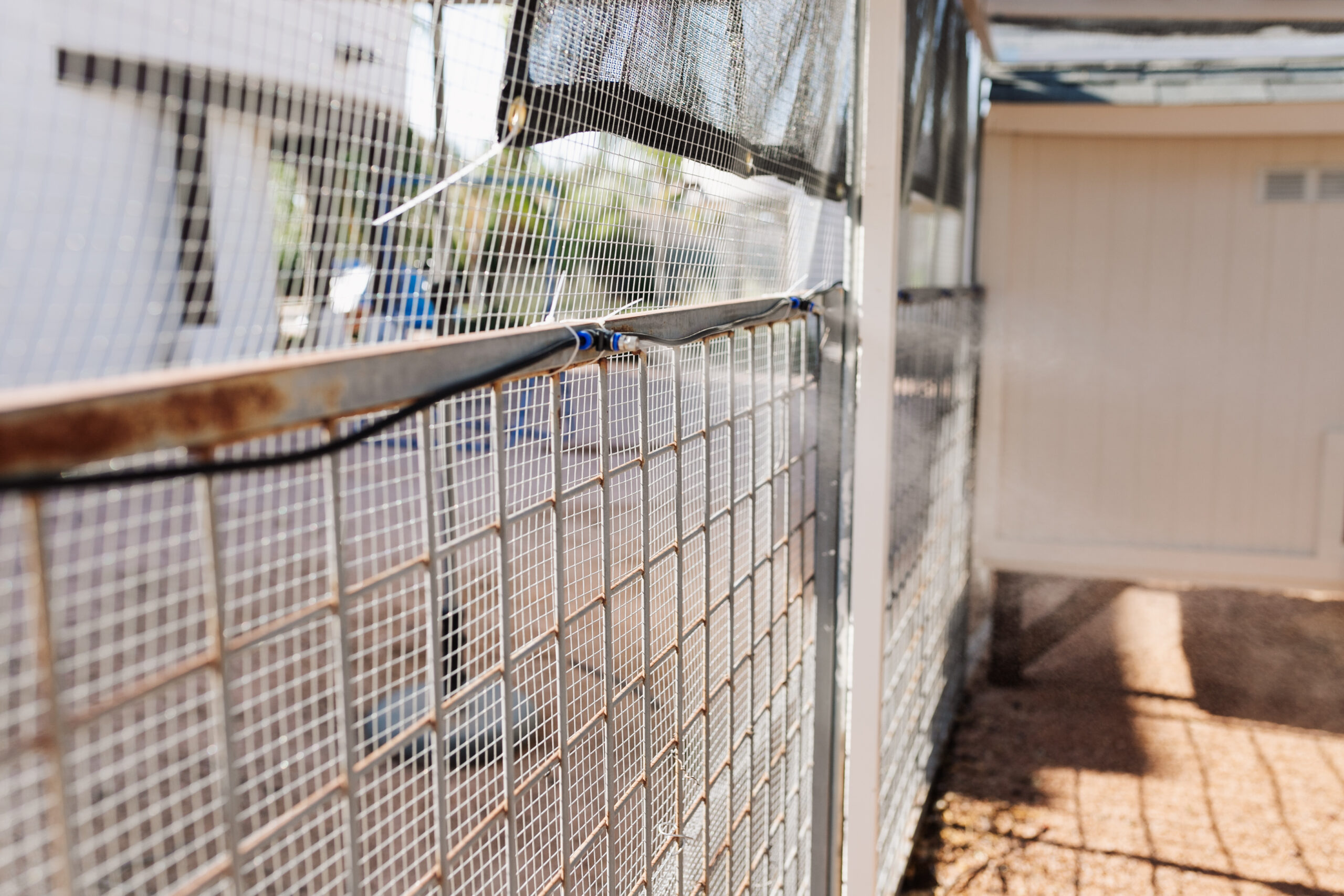 misters inside our desert chicken coop and run to keep them cool in the summer. #thelovedesignedlife #desertliving #desertchickens #backyardchickens