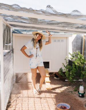 chicken coop and run DIY build #thelovedesignedlife #theldlhome #DIY #backyardchickens