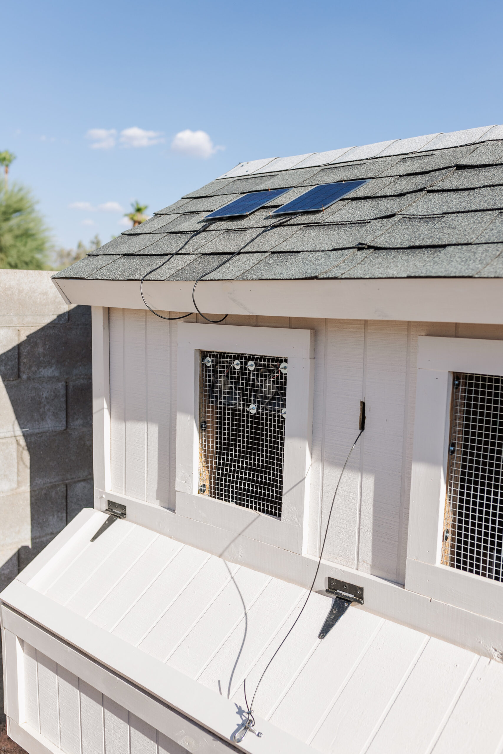 we added these small solar exhaust fans to keep airflow moving inside the coop
